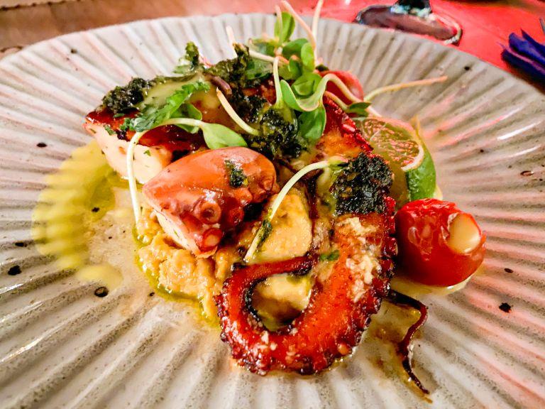 norma beste octopus burgas seafood