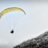 Descent of a Paraglider