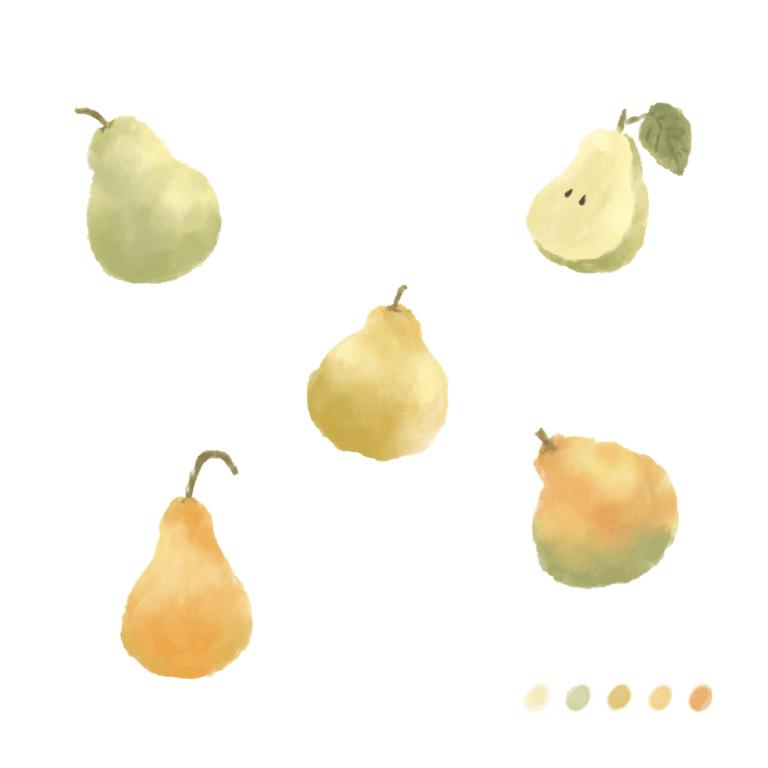 水彩梨子插畫教學
