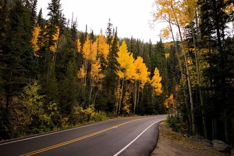 fall road 1 900
