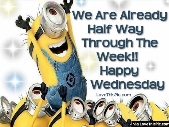 207685-we-are-already-half-way-through-the-week-happy-wednesday