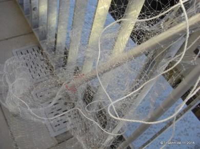 Ein Gewusel aus 2 Netzen