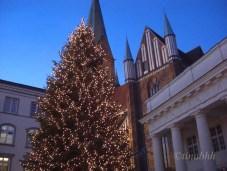 Weihnachtstanne mit 10.000 Lichtern vor dem Schweriner Dom
