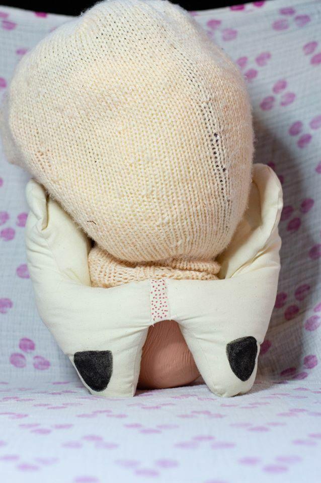 Cloth/Fabric Female Pelvis Model