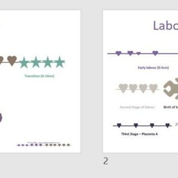 Childbirth Timeline PowerPoint