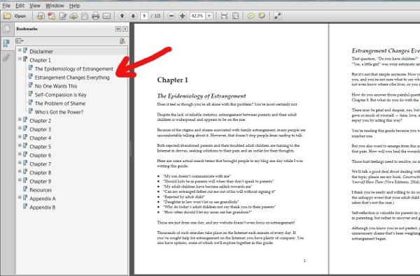 PDF_view_w_arrow