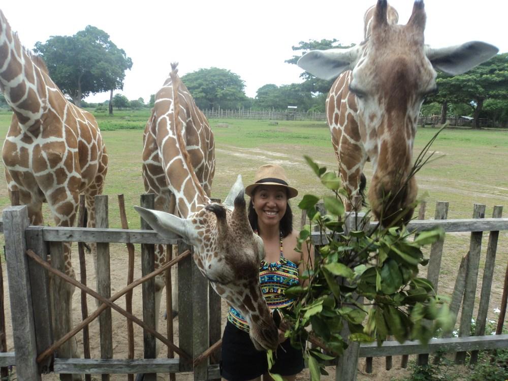 Summer Trip to Coron (Day 2): Fulfilling a Bucket List Item at Calauit Safari, Shipwrecks and More (1/6)