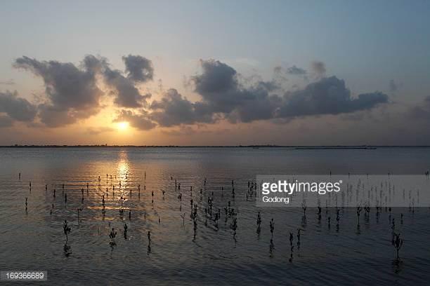 Senegal river pictures
