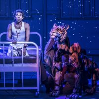 'It's a hit' – five-star reviews for Life of Pi on stage in Sheffield