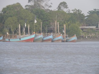 Part of the extensive Fishing fleet of Surinam