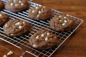 14Essence of Chocolate Cookies