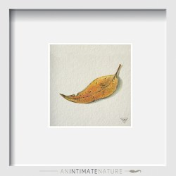 Autumn Note - Watercolour artwork by Tina Wilson