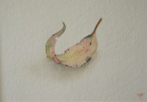 'Surrender', watercolour painting by Tina Wilson