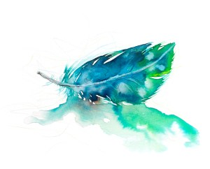 Watercolour painting of a feather by artist Tina Wilson