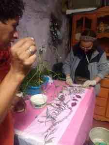 Tests d'ecoprint, Segundo tient une feuille de schinus molle, arbre très courant à Cajamarca, qui teint joliment en jaune