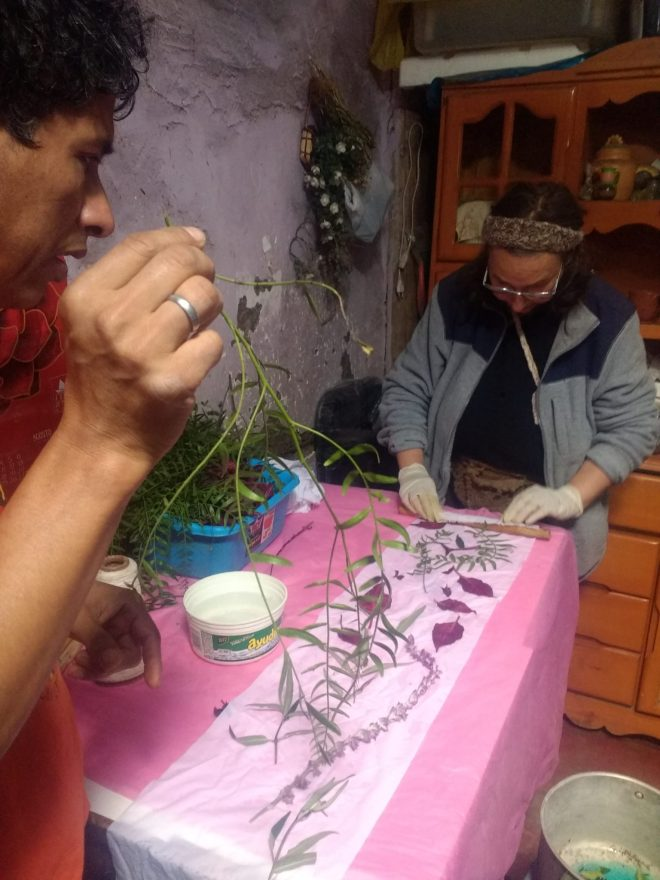 Essai d'ecoprint sur coton avec Segundo à Cajamarca - Pérou