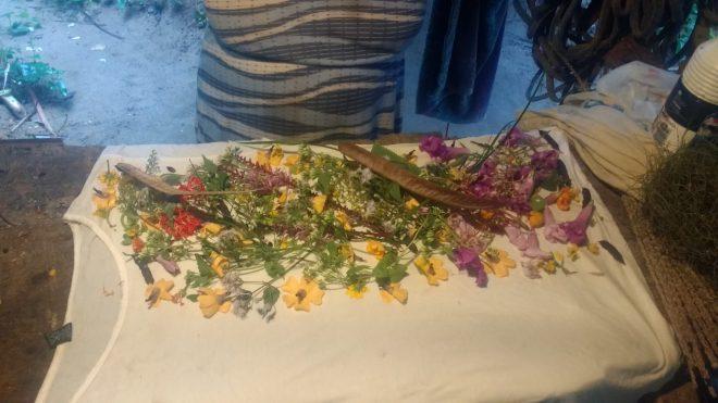 Préparation d'ecoprint très fleurie de mon amie Iafa au Brésil