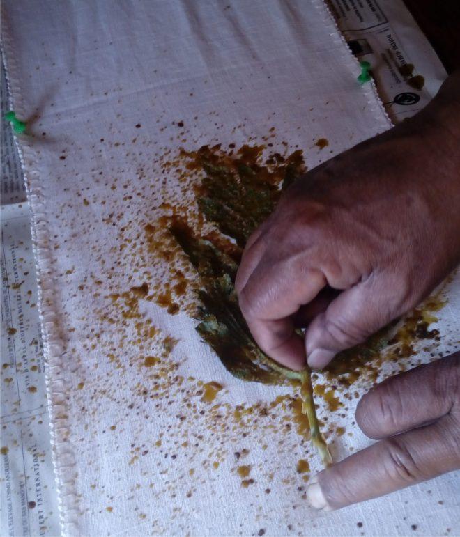Pochoir naturel et cire, batik malin à Talata, Madagascar