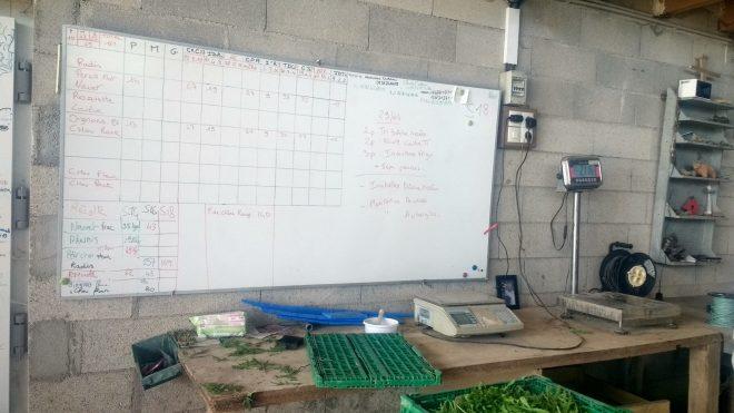 Tableau des récoltes et répartitions aux Amap