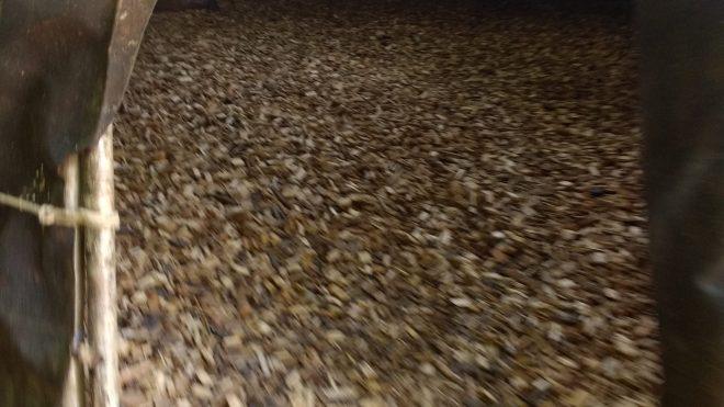 Ces petits morceaux de bois procurent un sol souple et bien isolé au Village Lacustre