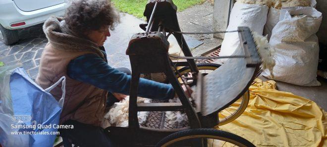 Cécile carde la laine