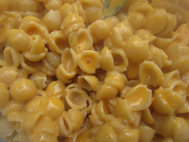 Can Dogs Eat Mac And Cheese – Tindog