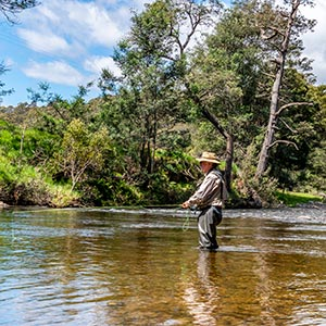 Peter fly fishing in the Ringarooma River near Tin Dragon Cottages