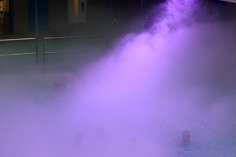 Purple-membrane–tine-bech-studio2