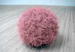 Tumbleweed1