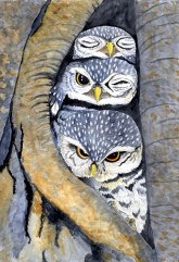 watercolor painting of three little owls sitting in a hollow tree