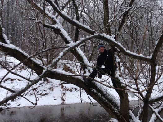 3.25.12 Patapsco in tree