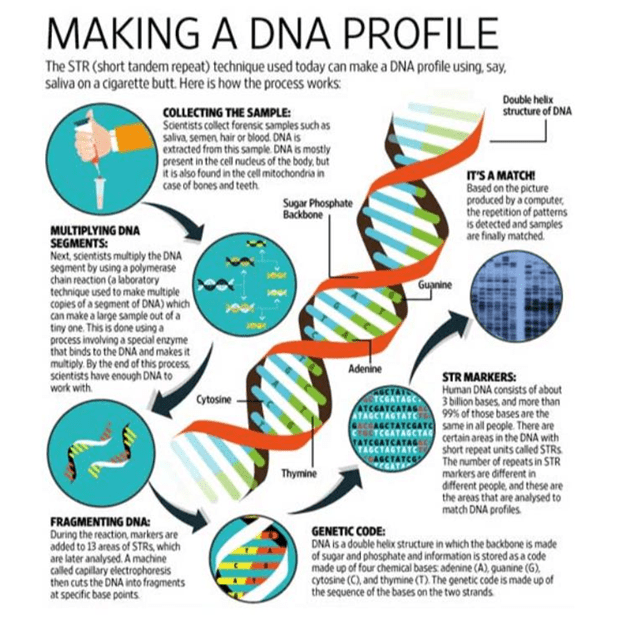 union cabinet clears dna profiling bill project upsc