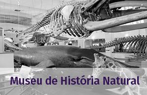 museu_historia_natural
