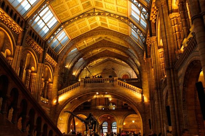 museu_historia_natural_1