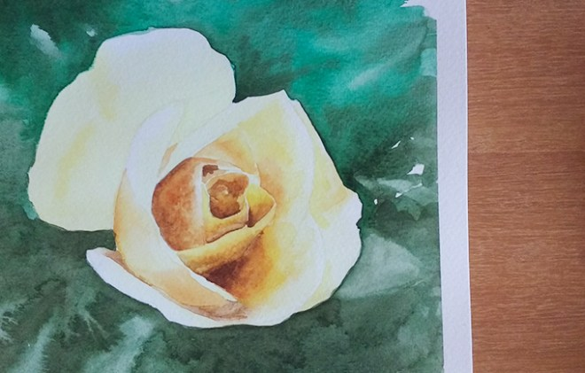 Curso de aquarela - rosa colorida