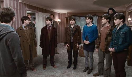 Muitos Harry Potter
