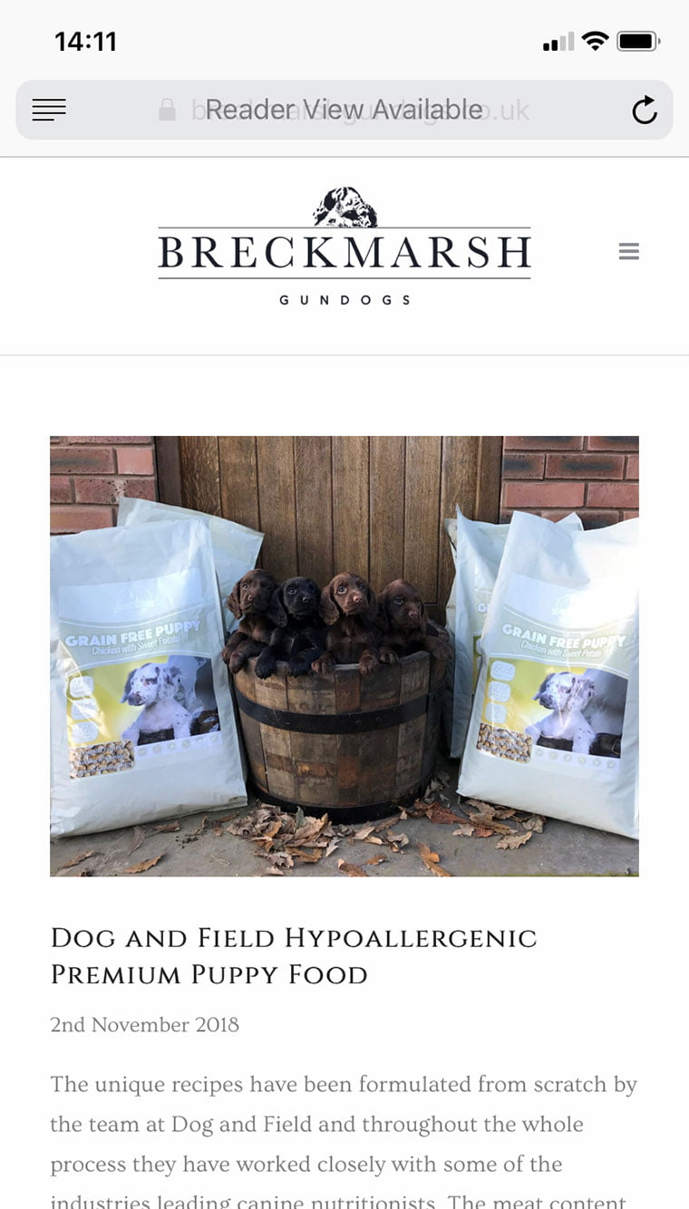 breckmarsh-gundogs-website-design-04