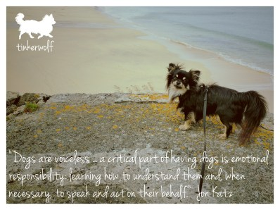 tinkerwolf dog photo quotes 53 Dogs are voiceless