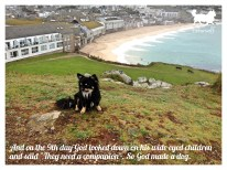 tinkerwolf dog photo quotes 73 So God made a dog