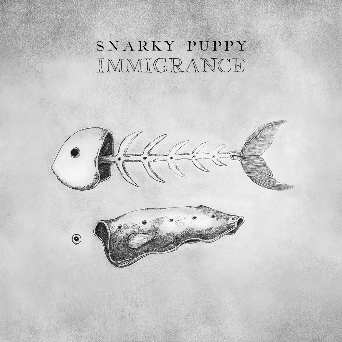 Snarky Puppy | Immigrance