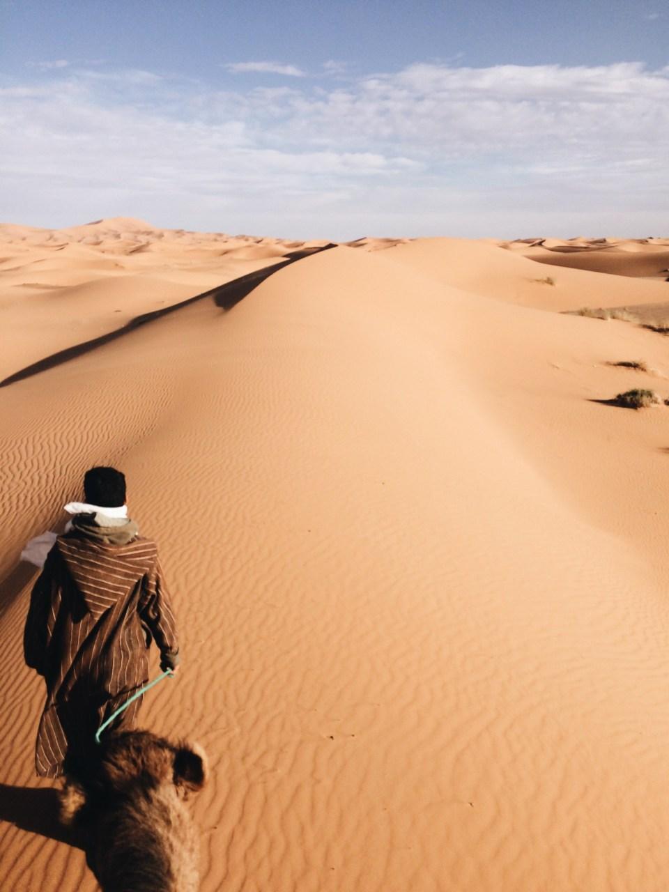 Marokko_Merzouga_Dromedar