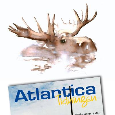 Commercial_Atlantica-försäkringar-Tinterova
