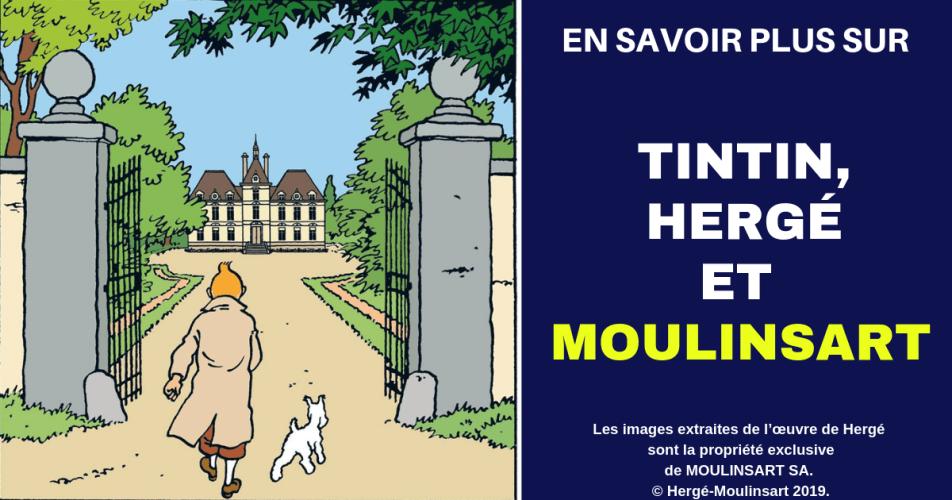TOUT SAVOIR SUR CHEVERNY, TINTIN ET LE CHÂTEAU DE MOULINSART