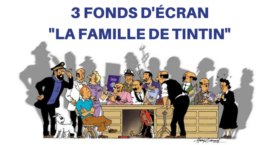 LES PRINCIPAUX COMPAGNONS DE TINTIN EN PERMANENCE SUR VOTRE ÉCRAN...