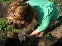 Koby adding the pea gravel.