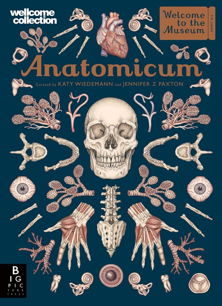 Anatomicum - Welcome to the Museum
