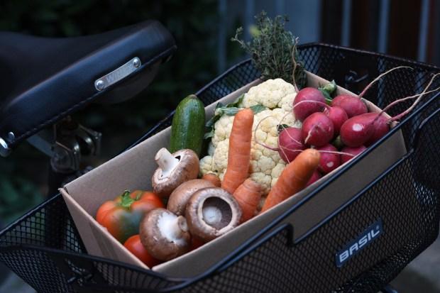 Lebensmittel retten, Essen retten App, TooGoodToGo Erfahrungen, TooGoodToGo Review, TooGoodToGo