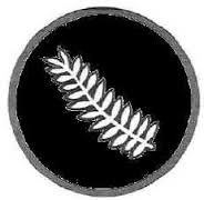 As the NZ army's premier division 2 NZ used the national symbol, the Silver Fern.