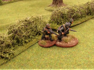 ...the small team of Germans that have jumped the hedge