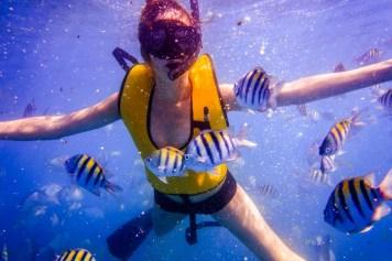 Keys Snorkeling - 0008